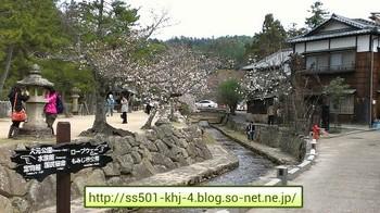 20130330 miyajima.jpg